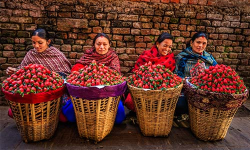 Indian fruit sellers on the streets of Kathmandu, Nepal