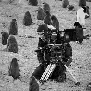Sophie Darlington filming penguins